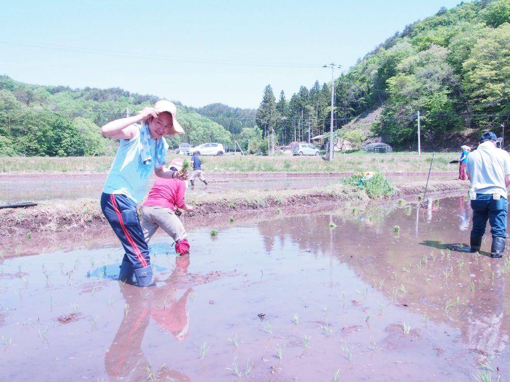 飯舘村で田植えに参加(代替テキスト)